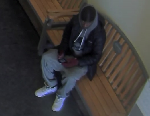 Male suspect to ID pic1