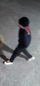 Robbery Woodroffe Suspect Pic 2