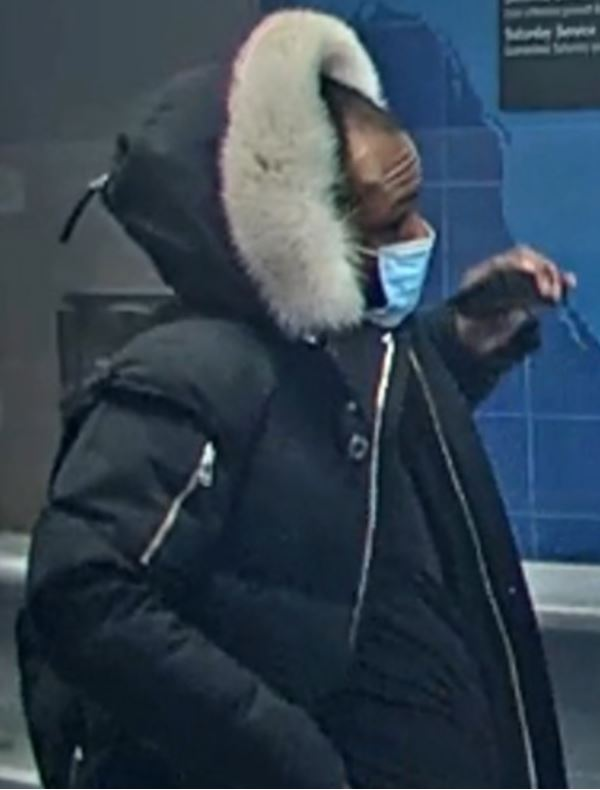 Theft-Fraud Suspect