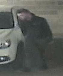 Cat Conv Theft Suspect #8 Central GAS